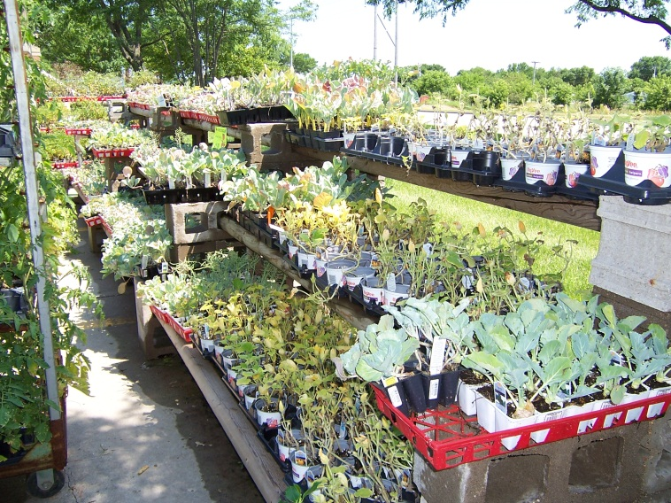 Garden Program | West Des Moines, IA