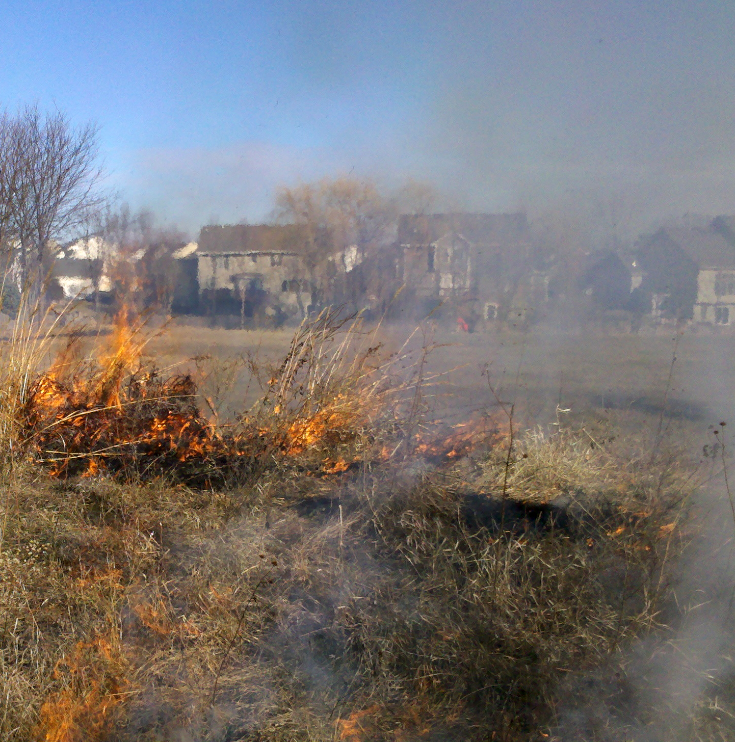 Prairie burning to take place in West Des Moines