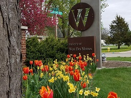 Tulips - VJ WDM Sign