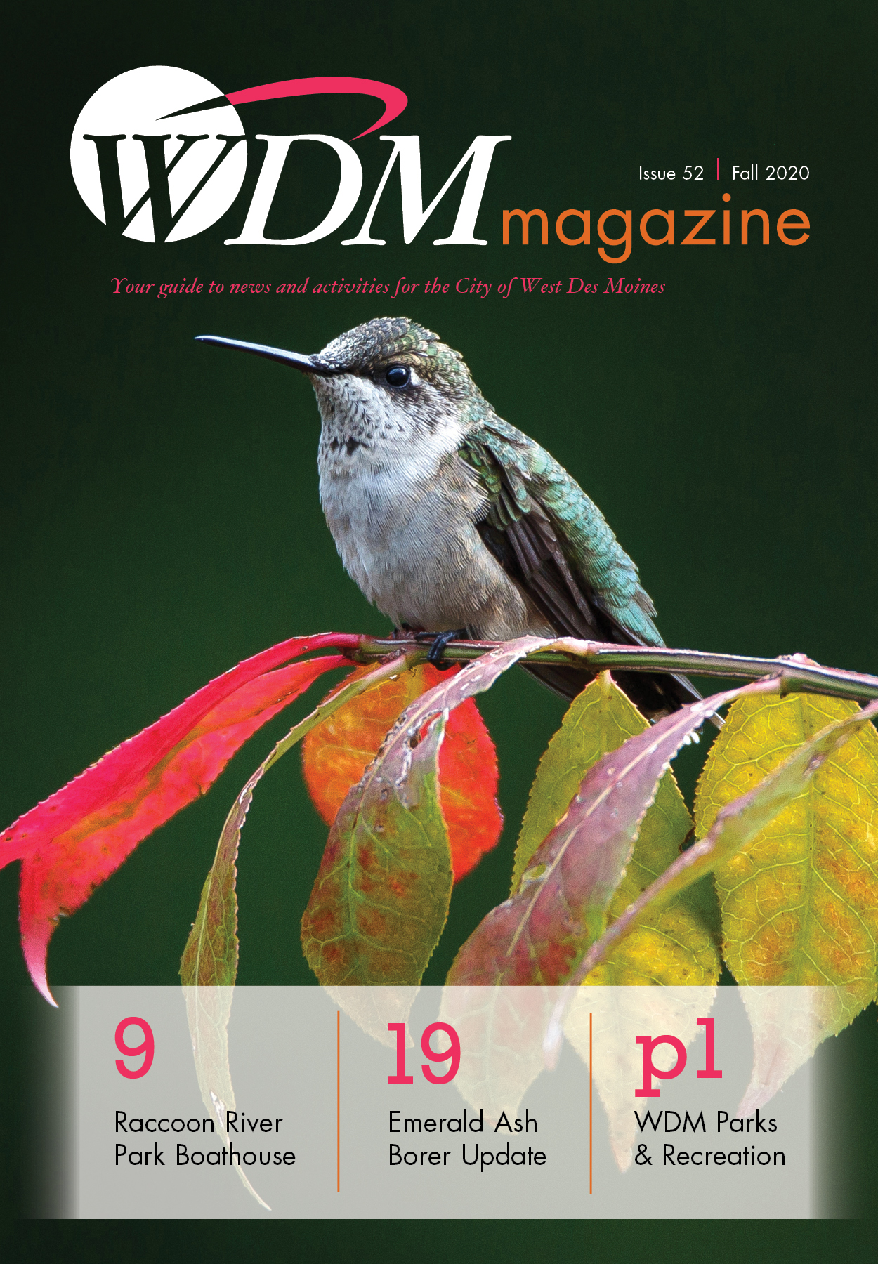WDM Magazine cover for Fall 2020 issue 52