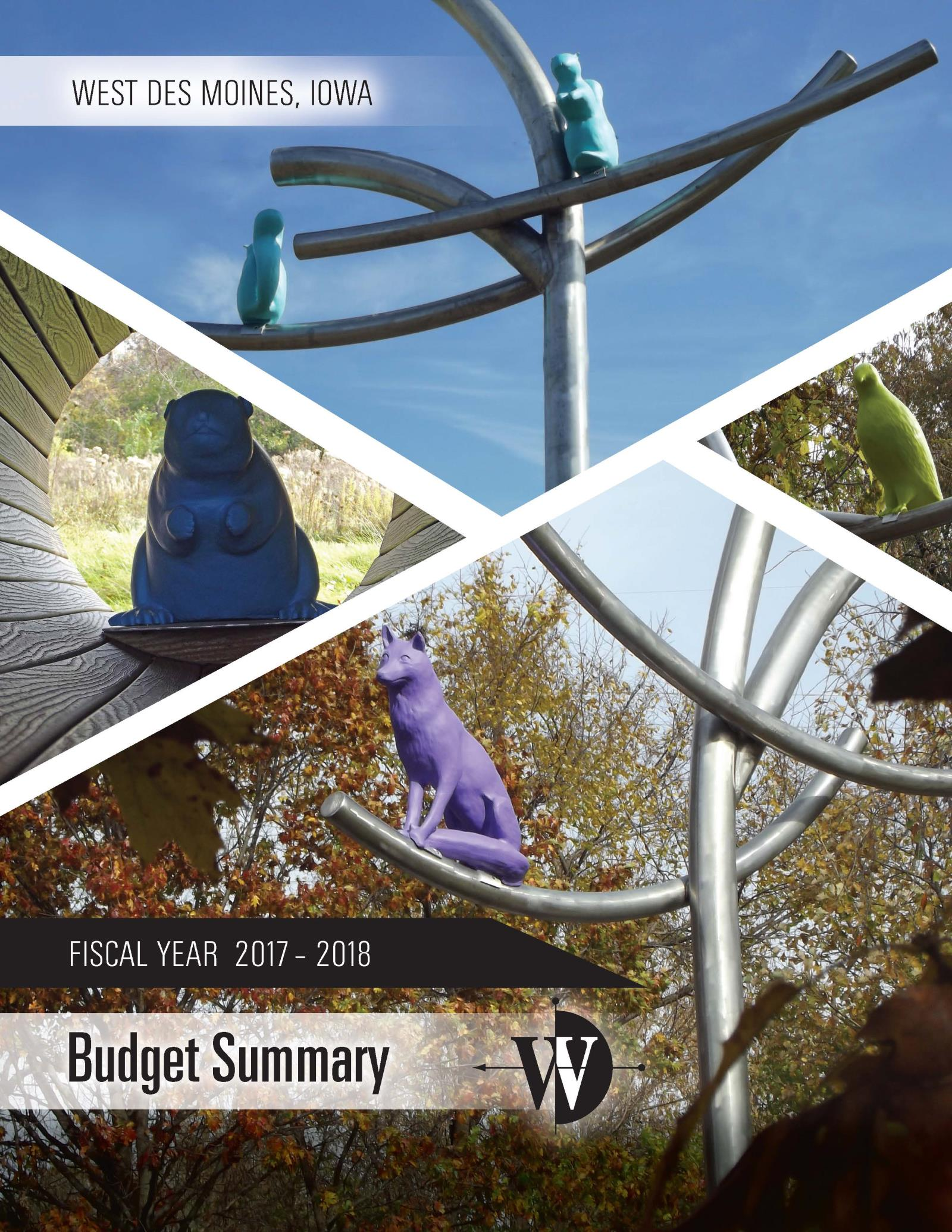 FY 17-18 Budget Cover